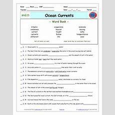 Translation Transcription Worksheet Biology High School 9th 10th Grade Dna Mrna Amino Acid