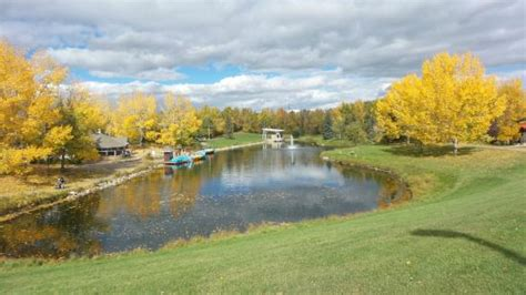 Bower Ponds Paddle Boat Rentals by Boat House Picture Of Bower Ponds Deer Tripadvisor