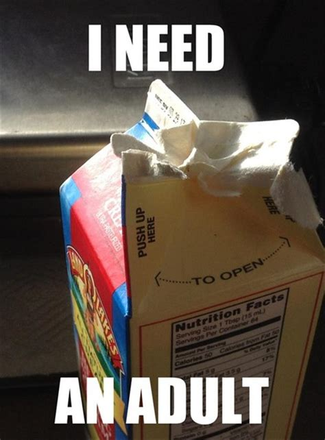 Funny Adult Meme - funny pictures 42 pics
