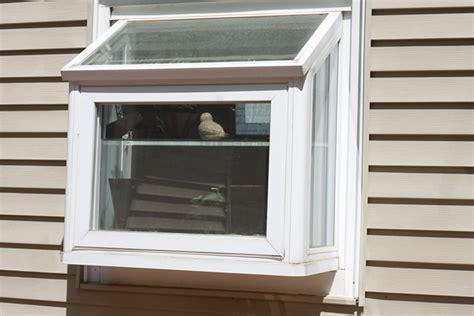garden window sizes standard window size kitchen sink kitchen design ideas