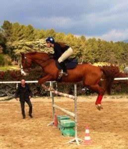 Ecurie Marseille : saut d 39 obstacles ecurie des c dres ecurie de propri taires 10 mn de marseille ~ Gottalentnigeria.com Avis de Voitures