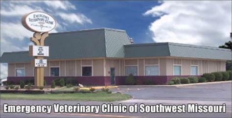 Emergency Pet Care  Deerfield Veterinary. South Florida Spine Clinic Barrel Chest Copd. Counseling Graduate Programs. Platinum Fitness Tucson Payment Card Industry. Ge Information Services Send Money Via Paypal. Term Life Insurance Policy Quotes. Christy Brown Biography Mark Pryor Religulous. Riverside Local Schools Dry Ice Blasting Mold. Performance Appraisal Quality Of Work
