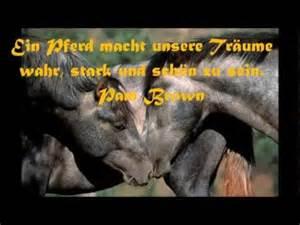 sprüche weisheiten die schönsten sprüche zitate und weisheiten über pferde