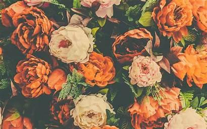 Floral Background Retro Orange Flowers Peonies Desktop