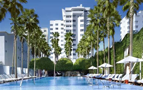 delano miami beach hotel reviews 2018 miami beach advisor