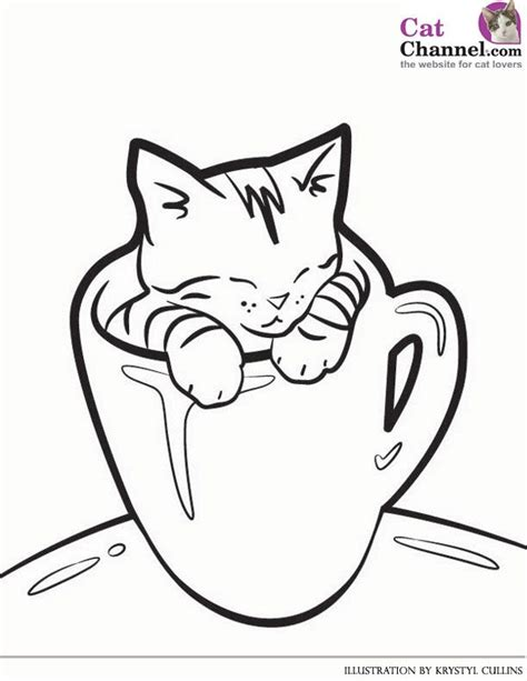 cat  kitten coloring pages  coloring pages