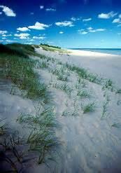 kohler park dunes state natural area wisconsin dnr