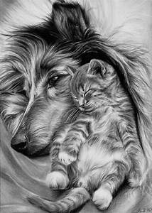 819 best Domestic Animals Grayscale Coloring images on ...