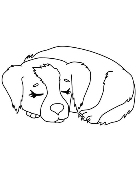 dibujos de perros faciles  dibujar dibujo  pintura