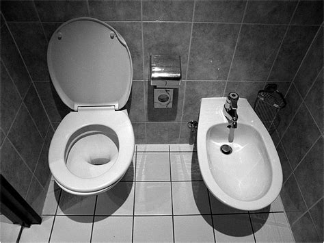 Everything You've Always Wanted To Know About The Bidet