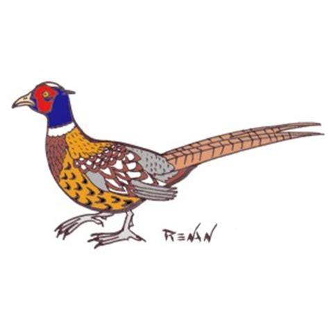cuisiner le faisan facile les oiseaux en fiches coloriages photos et dessins avec