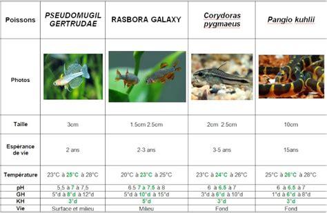 combien de poisson dans un aquarium forum gt message gt d 233 butant mon nano aquarium 60l aquabase org