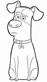 Coloring Pets Pages Printables sketch template