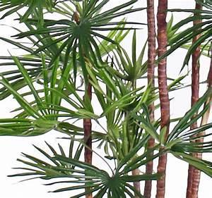 Künstliche Palmen Für Draußen : kunstblumen kunstpflanzen top art int detailansicht uv sicher baby fan palm 7 st mme ~ Frokenaadalensverden.com Haus und Dekorationen