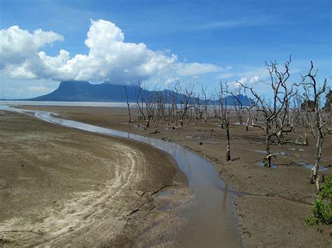 Essay Trip To Sarawak by Bako National Park Borneo Photo Essay Malaysia