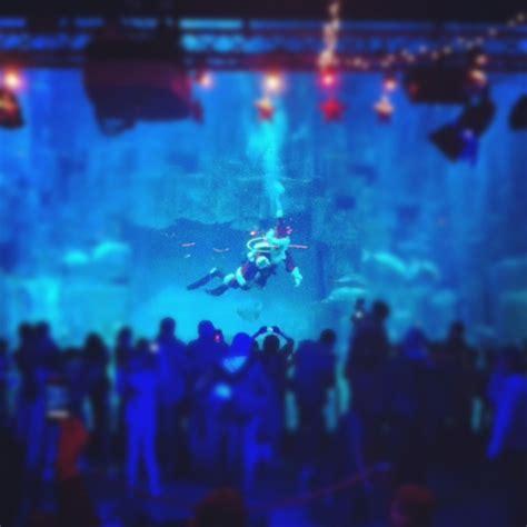 l aquarium de pour les f 234 tes de fin d 233 e la reine de l iode