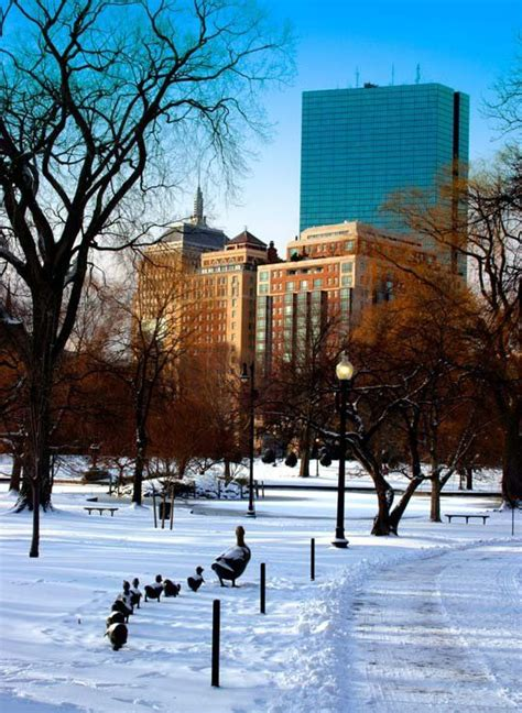 25+ Best Ideas About Boston Winter On Pinterest Boston