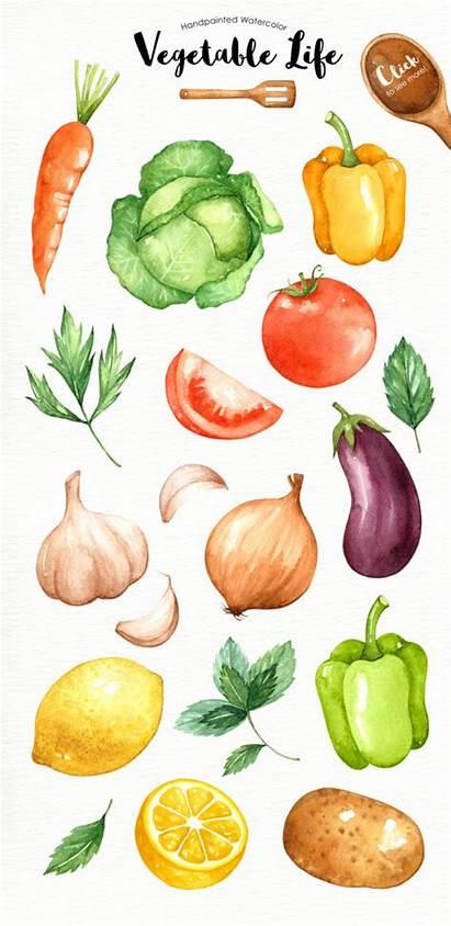 Clipart Watercolor Vegetables Vegetable Veggie Veggies Organic