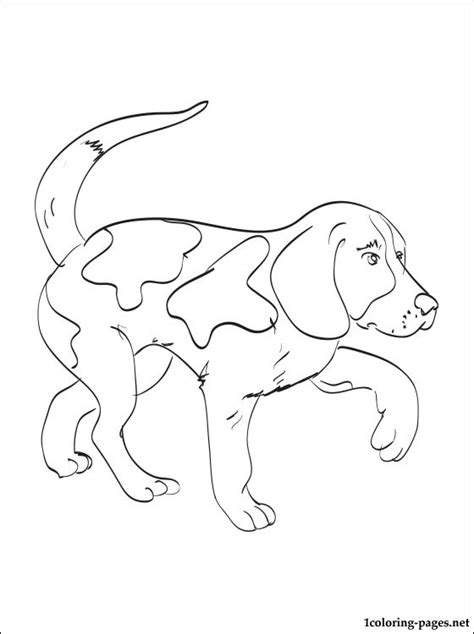 Beagle Kleurplaat by Kerry Beagle Coloring Page Coloring Pages