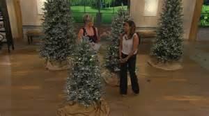 Flocking For Christmas Trees Where To Buy by Ed On Air 6 5 Snow Drift Fraiser Fir Tree By Ellen
