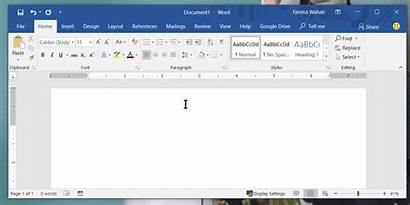 Word Microsoft Text Office Ms Expander App