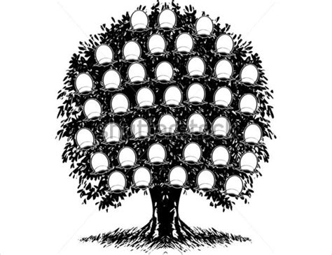 Tree Template Black And White by Family Tree Black And White Template Www Pixshark
