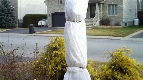 winter tree wrap cold hardy palm tree winter protection zone 5a