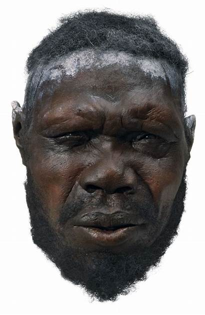 Age Stone Humans Early Modern Sapiens Male