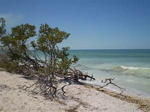 honeymoon island state park dunedin fl life make my With honeymoon state park florida