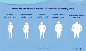 My Metabolic Syndrome  How To Calculate Your Optimal