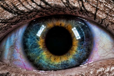 Blue And Green Pigments Don't Exist In The Human Iris, So