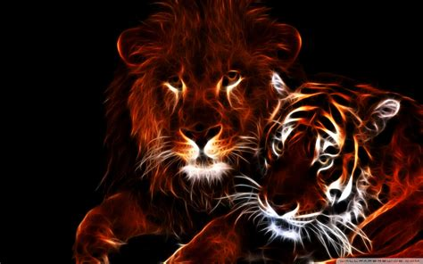 Dallas Cowboys Pc Wallpaper Lion And Tiger Wallpaper
