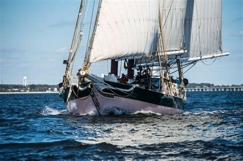 great chesapeake bay schooner race  spinsheet