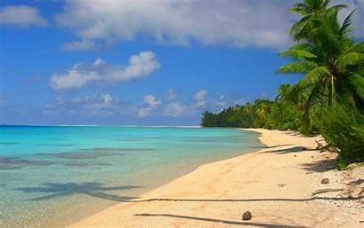 Tropical Sand Island Water Sea Beach Palm