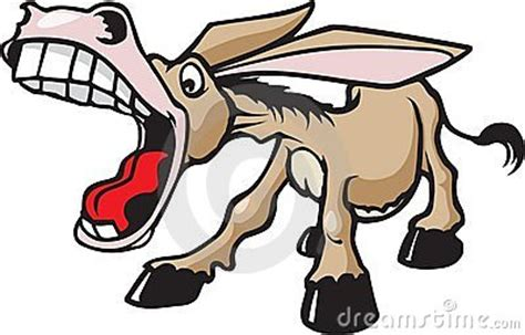 excited donkey stock images image