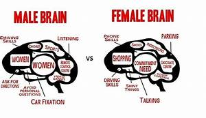 Men And Women Wired Brains