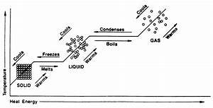 Chapter 3 Solids  Liquids   U0026 Gases Study Guide