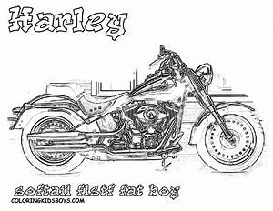 Harley Fat Boy