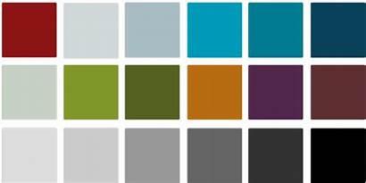 Colors Medicine Stanford Infographic Template Web Websites