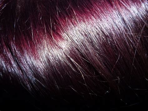 Deep Burgundy Hair Color Revlon