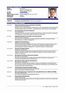 excellent resume sample sample resumes With best it resume
