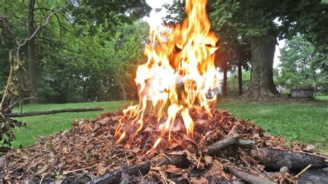 Is It Legal To Burn Leaves In Indianapolis?