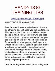 handy dog training tips With dog training techniques