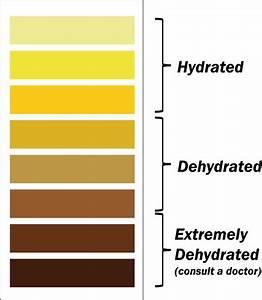 Dehydration • SSN