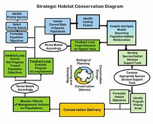 Strategic Habitat Conservation Diagram  Some Activities May Occur
