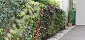 Mur Végétal Extérieur : creer un mur vegetal exterieur latest les murs vgtaux ont ~ Premium-room.com Idées de Décoration