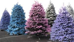 colored flocked christmas trees images