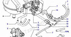 2002 Ford Focus Vacuum Hose Diagram