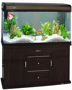 China Desktop Aquariums  Aquarium Tanks  U0026 Furniture Catalog