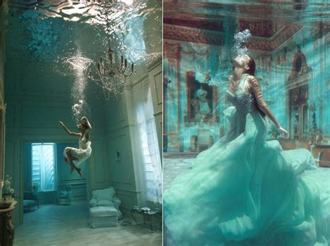regal underwater portraits aquatic